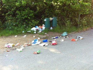 Bins Overfull Desborough web